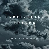Pluviophile Tracks by Relaxing Rain Sounds