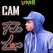Fake Love by CAM the Loner