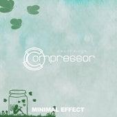 Minimal Effect de Various Artists