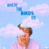 where the birds go by K.A.R.