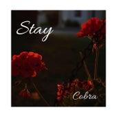 Stay de Cobra