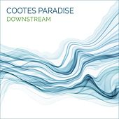 Downstream von Cootes Paradise