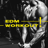 EDM Workout! de Various Artists