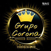 Fuentes de Ortiz van Grupo Corona