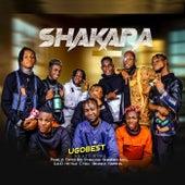 Shakara (feat. Panelzi, Edited Boi, Stainless, Sharpboi, Ino G, Ojo D, Mr. Haz, C Man, Benkizz & Marshall) von Ugobest