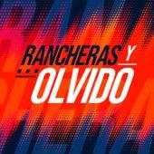 Rancheras y Olvido de Various Artists