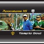Apocalipse 16 E Templo Soul von Pregador Luo