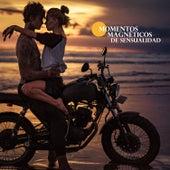 Momentos Magnéticos de Sensualidad by Various Artists