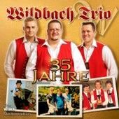 35 Jahre Wildbach Trio von Wildbach Trio