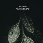 Johannes Brahms - Water Drops by 新山恵理