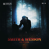 Smith & Wesson de Luv Resval