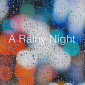 A Rainy Night by Various Artists