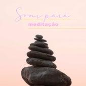 Sons Para Meditação de Various Artists