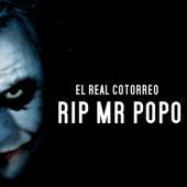 RIP Mr Popo by EL Real Cotorreo