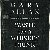 Waste Of A Whiskey Drink de Gary Allan