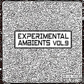 Experimental Ambients, Vol. 9 by Various Artists
