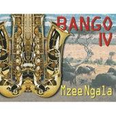 Bango IV - African Music de Bango