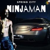 Spring City by Ninjaman