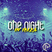 One Night in Ibiza de Various Artists
