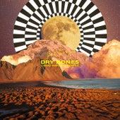 Dry Bones (Benj Hartwig Remix) by Two
