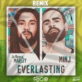 Everlasting (Natty Rico Remix) di Minj