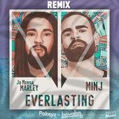 Everlasting (Pokeyz & Bovalon Remix Edit) von Minj