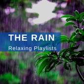 Heavy Rain de Zen Music Garden