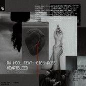 Heartbleed by Da Hool
