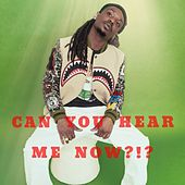 Can You Hear Me Now?!? von Flow