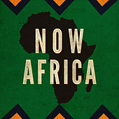 Now Africa de Various Artists
