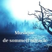 Musique de sommeil miracle: Soulagement efficace de l'insomnie, Cure de guérison, Soulagement du stress by Oasis de sommeil