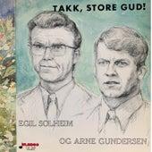 FLP-3039 Egil Solheim og Arne Gundersen de Egil Solheim