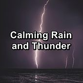Calming Rain and Thunder by Rain Sounds and White Noise