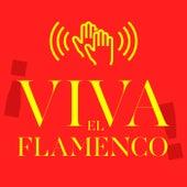 ¡Viva el Flamenco! di Various Artists