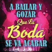 A Bailar y Gozar Que La Boda Se Va Acabar by Various Artists