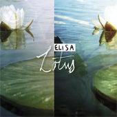 Lotus by Elisa