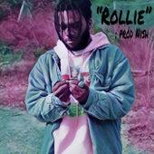 Rollie by B4god