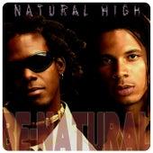 Natural High by Benatural