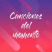Canciones del Momento de Various Artists