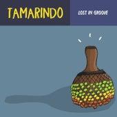 Lost In Groove de Tamarindo Sounds