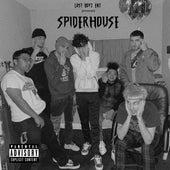 Spiderhouse de Lost Boyz