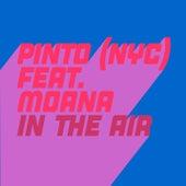In The Air de Pinto