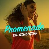Promenade en musique von Various Artists