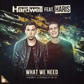 What We Need von Hardwell