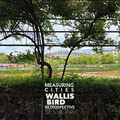 Measuring Cities (Retrospective Sessions) by Wallis Bird