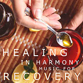 Healing In Harmony Music For Recovery by Various Artists