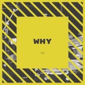 Why von YC