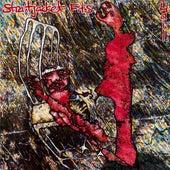 Hail ((Reissue)) de Straitjacket Fits