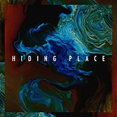 Hiding Place von Wonders