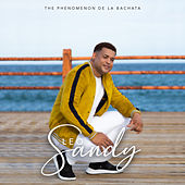 The Phenomenon de la Bachata by Leo Sandy